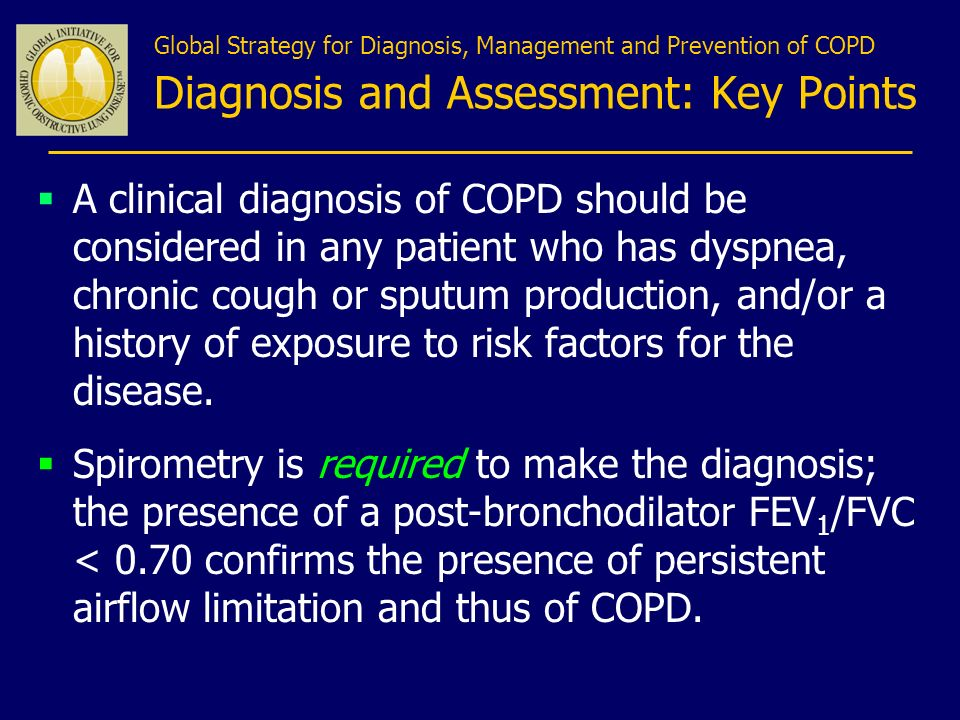 Global Strategy for Diagnosis, Management and Prevention of COPD Diagnosis and Assessment: Key Points