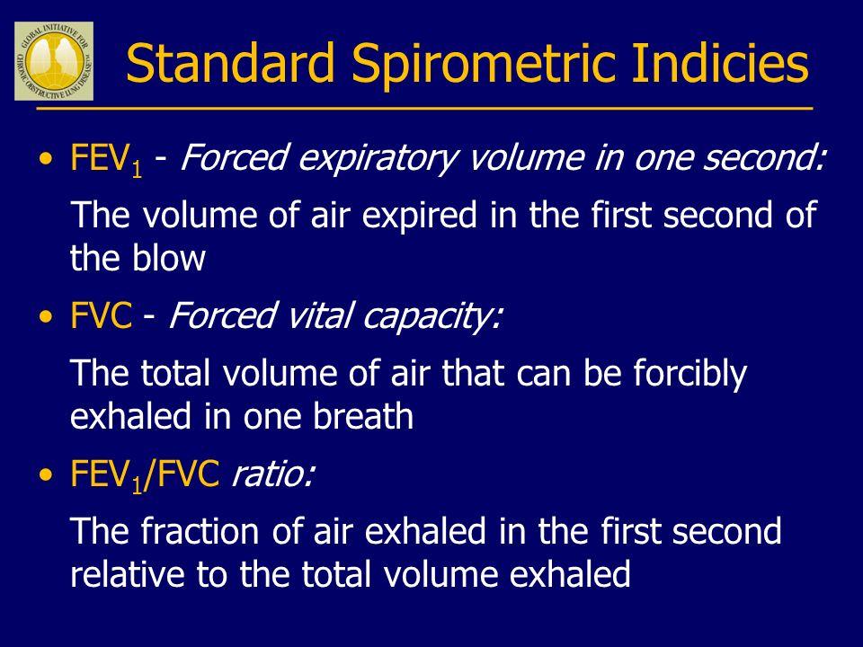 Standard Spirometric Indicies