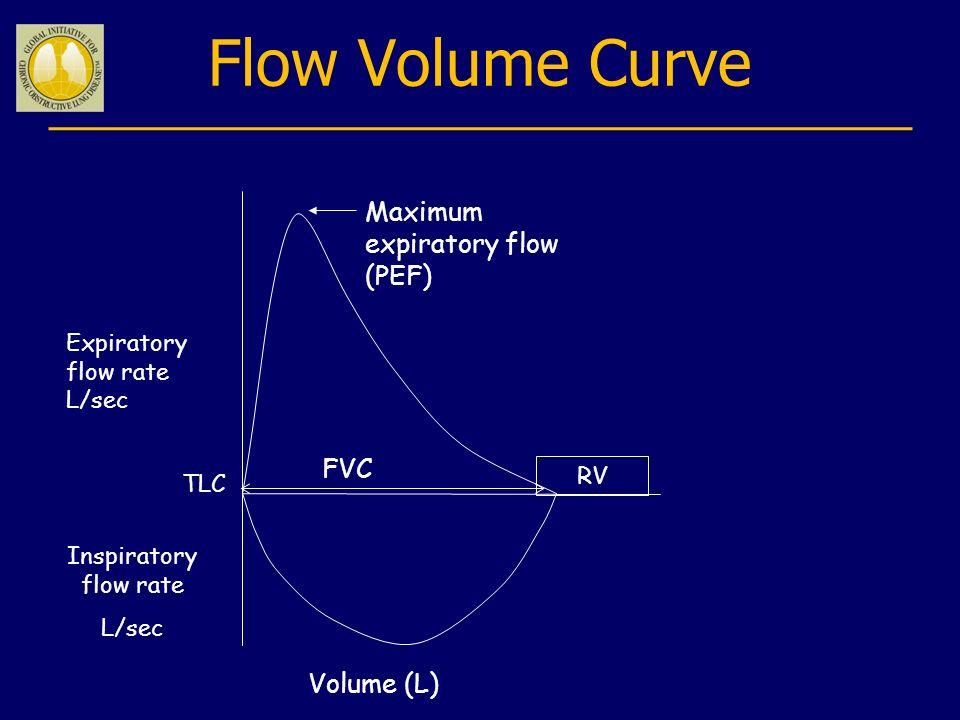 Flow Volume Curve Maximum expiratory flow (PEF) FVC Volume (L)