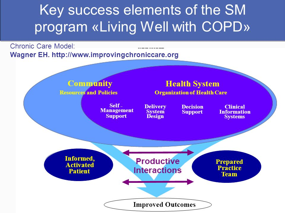 Key success elements of the SM program «Living Well with COPD»