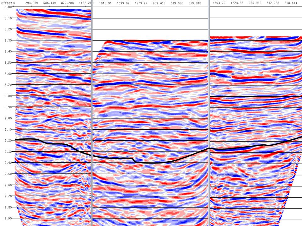 Top of reef interpretation from surface seismic overlain on cross well profiles.