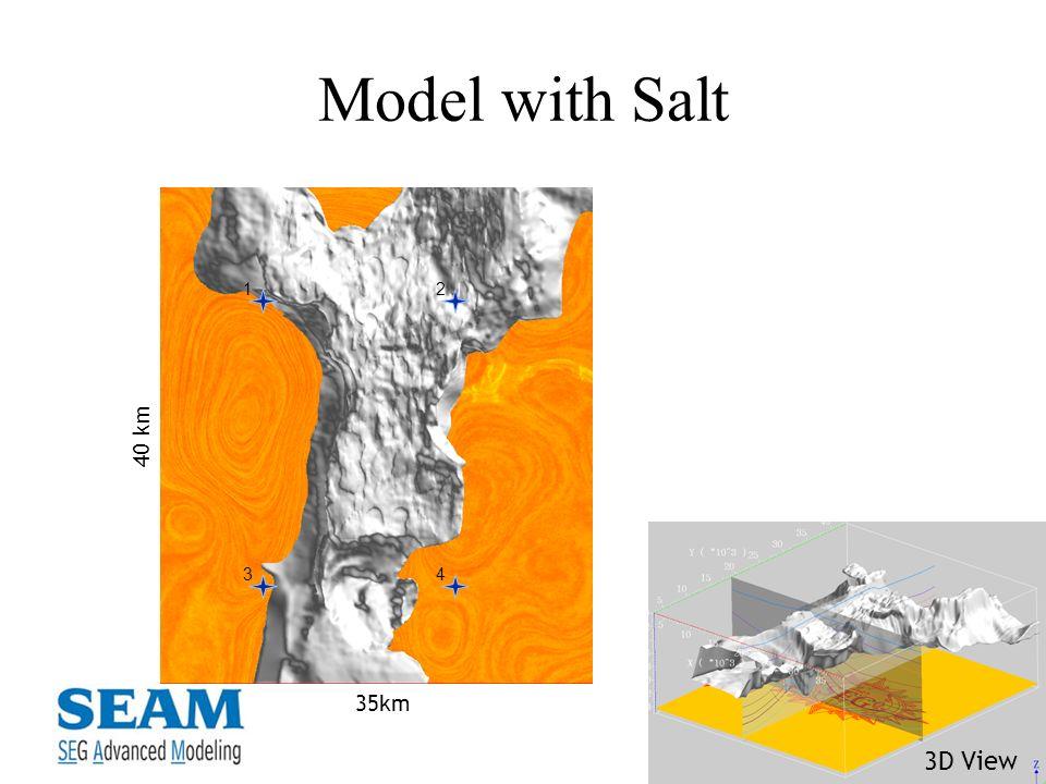 Model with Salt 1 2 3 4 40 km 35km 3D View