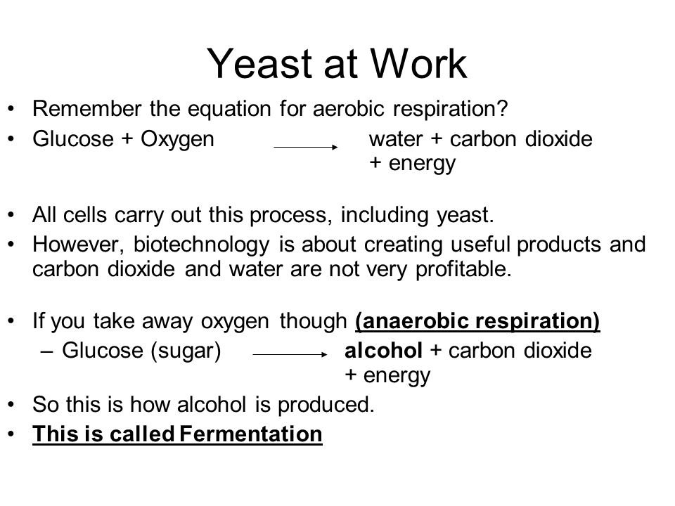 yeast anaerobic respiration sugar Yeast propogation with aerobic respiration the primary goal of fermentation is the production of alcohol, while the goal of propagation is increasing the yeast biomass on one hand, anaerobic yeast respiration converts sugar into alcohol, carbon dioxide, and some energy.