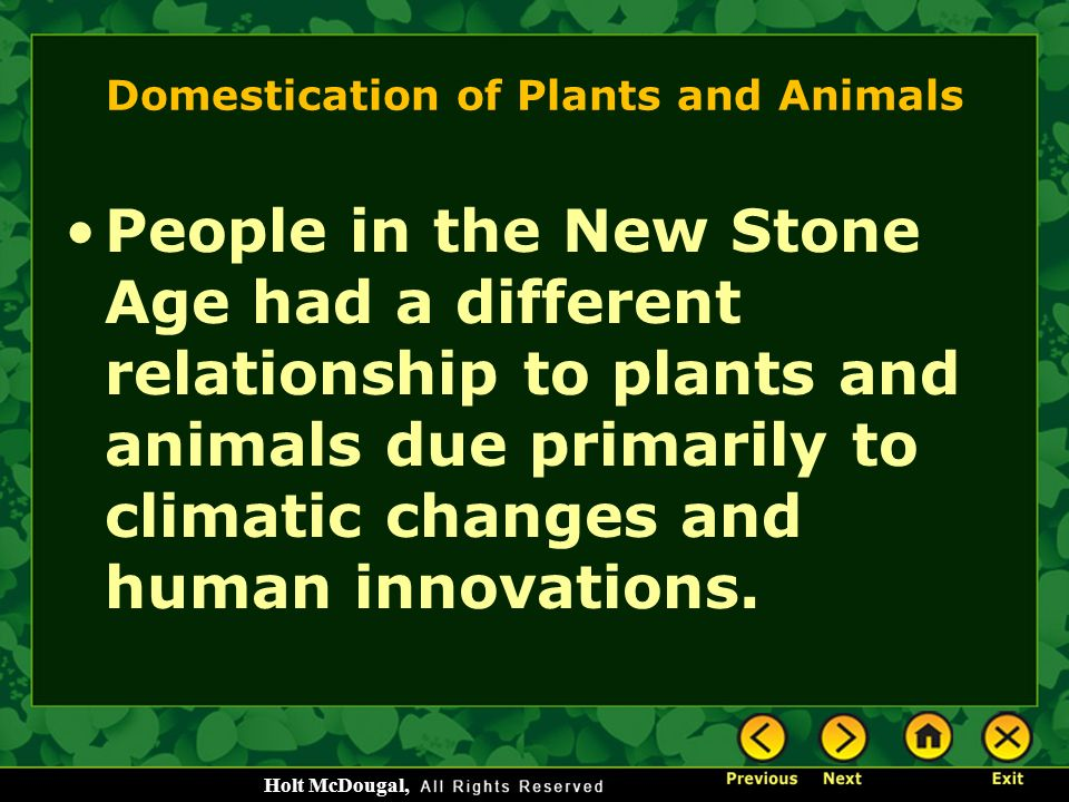 domestication of plants and animals Animal domestication is what scholars call the millennia-long process that created the mutually beneficial relationship that exists today between animals and humans some of the ways people.