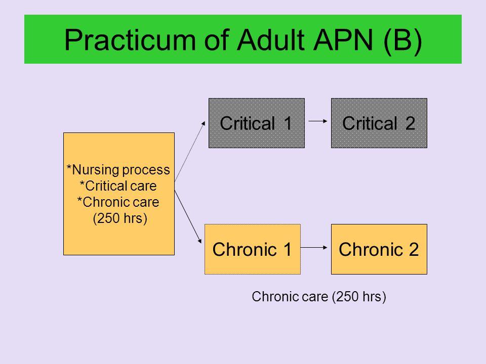 Practicum of Adult APN (B)