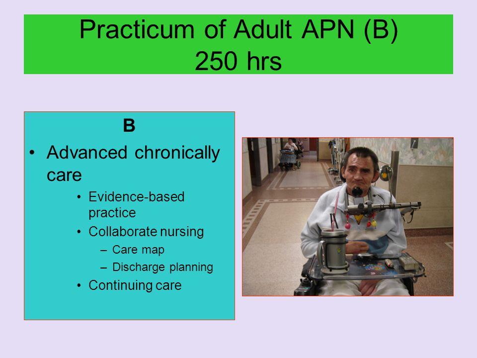 Practicum of Adult APN (B) 250 hrs