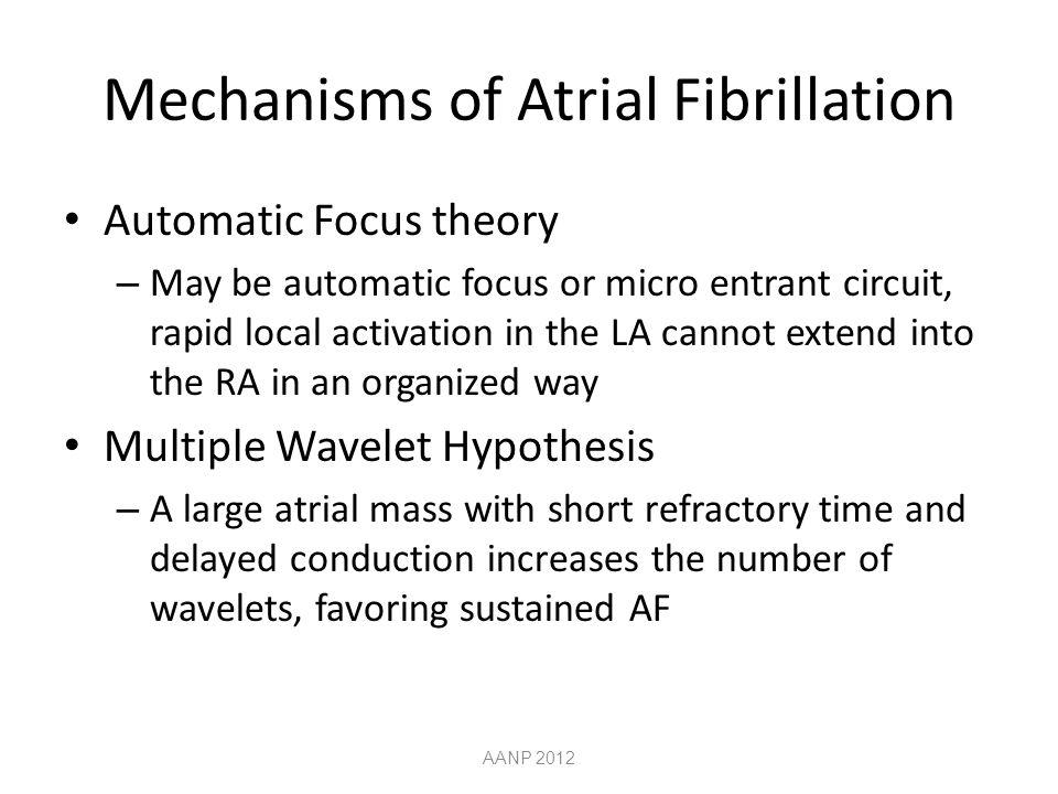 Mechanisms of Atrial Fibrillation