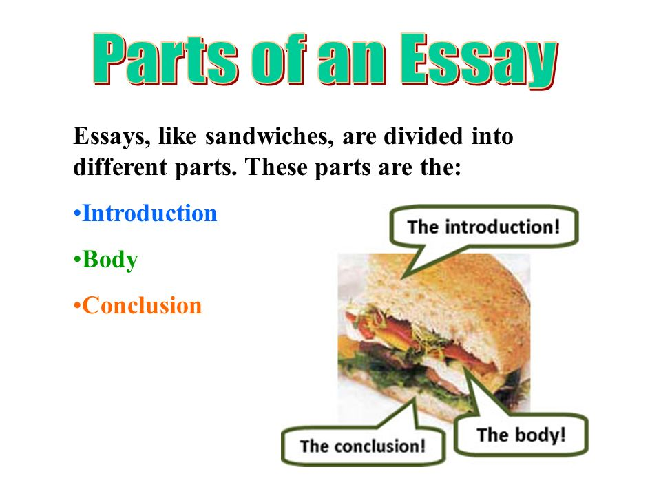 understanding how to write an essay ppt  2 parts