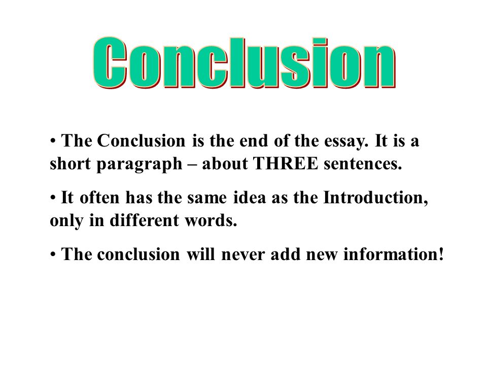 introduction body and conclusion of an essay