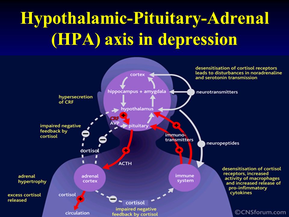 Hypothalamic-Pituitary-Adrenal (HPA) axis in depression