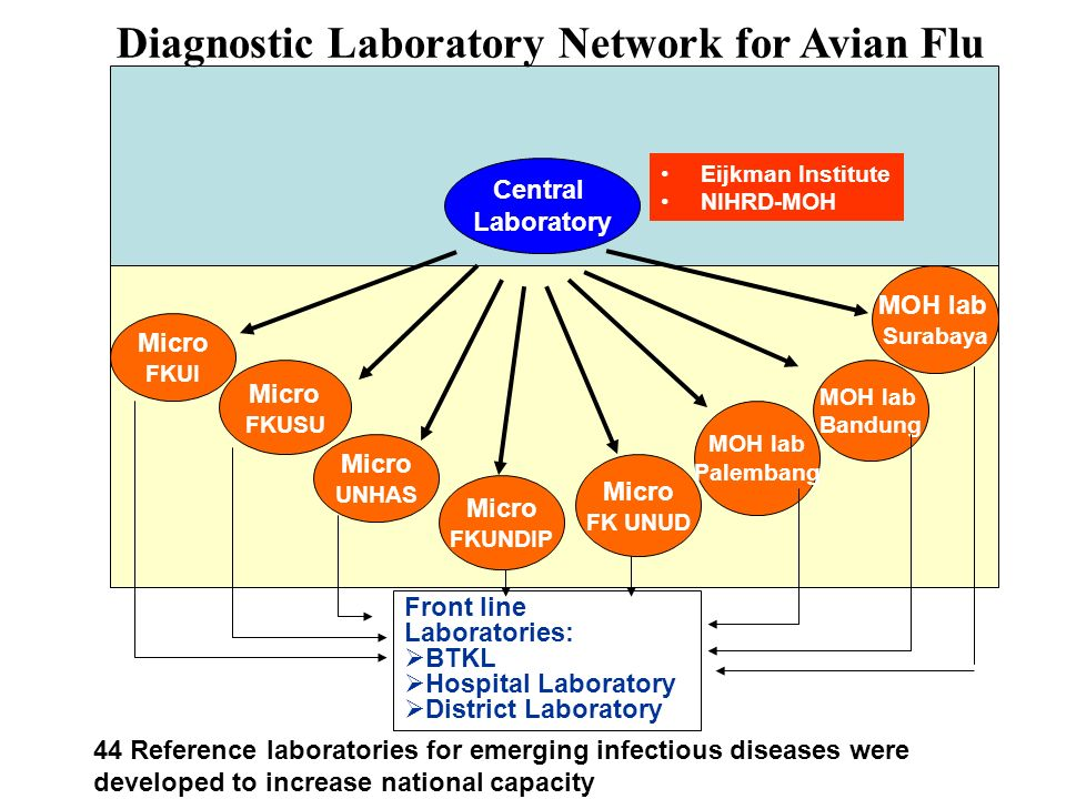 Diagnostic Laboratory Network for Avian Flu