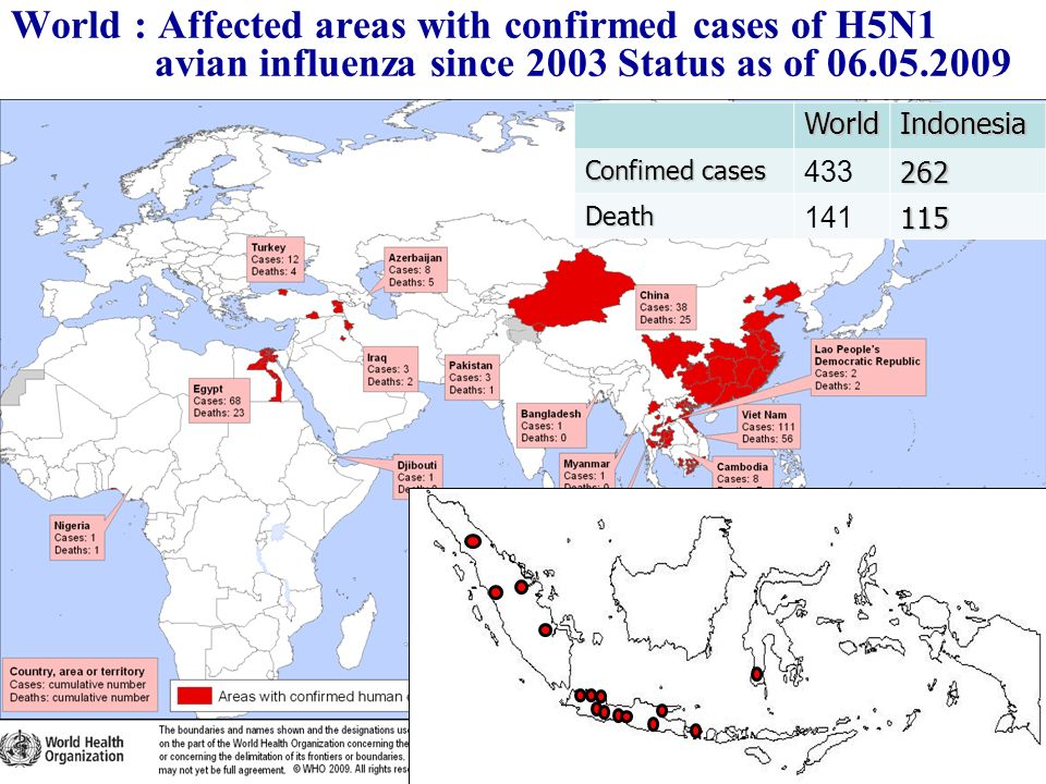 World : Affected areas with confirmed cases of H5N1 avian influenza since 2003 Status as of