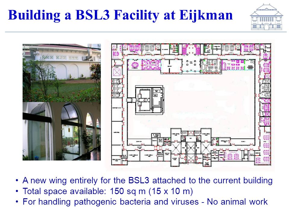 Building a BSL3 Facility at Eijkman