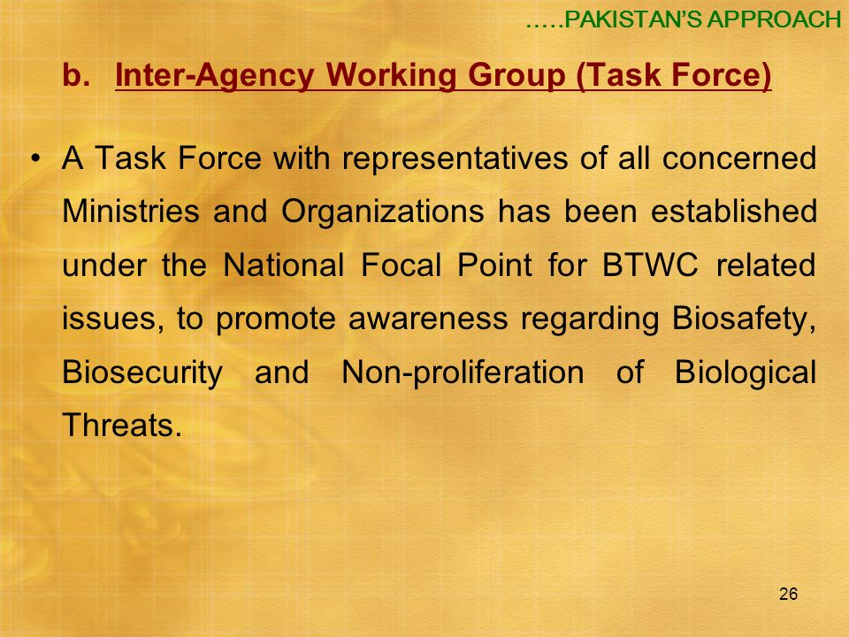 b. Inter-Agency Working Group (Task Force)