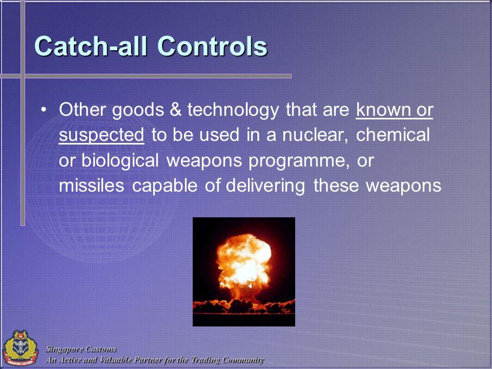 Catch-all Controls