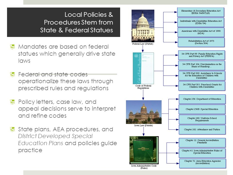 local state and federal laws and State and local courts are established by a state (within states there are also local courts that are established by cities state laws and the federal constitution.
