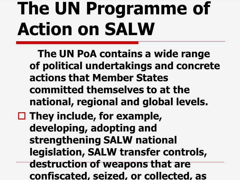 The UN Programme of Action on SALW
