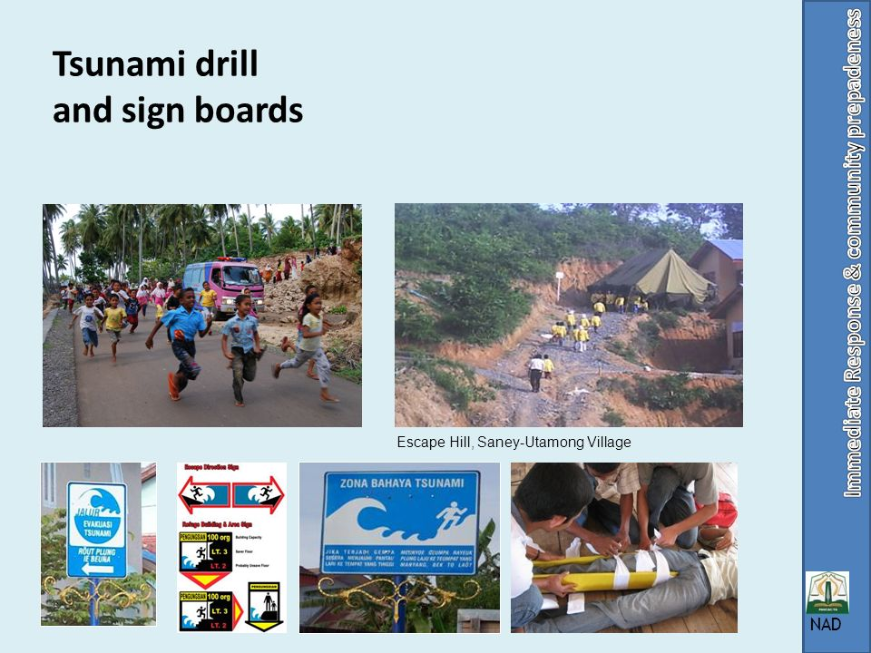 Tsunami drill and sign boards