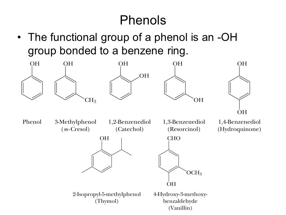 systhesis from Explore geneé handley's board genetics-protein systhesis on pinterest | see more ideas about school, anatomy and life science.