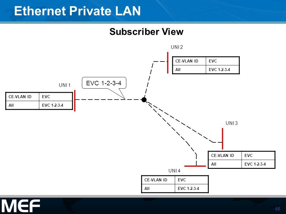 Ethernet Private LAN Subscriber View EVC 1-2-3-4 UNI 2 UNI 1 UNI 3