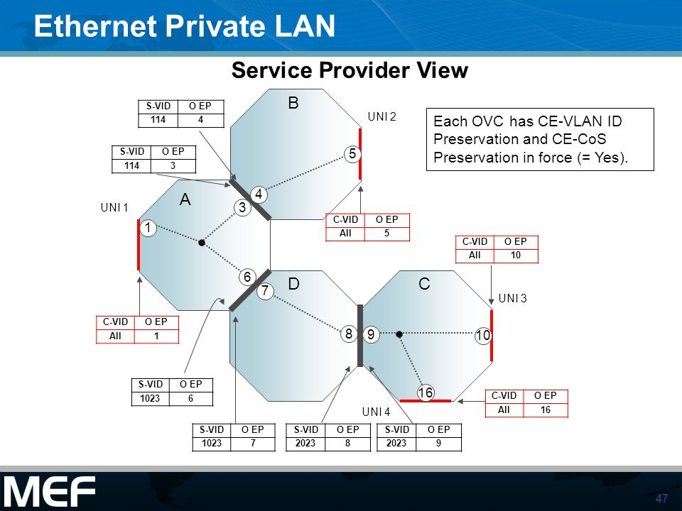 Ethernet Private LAN Service Provider View A B D C