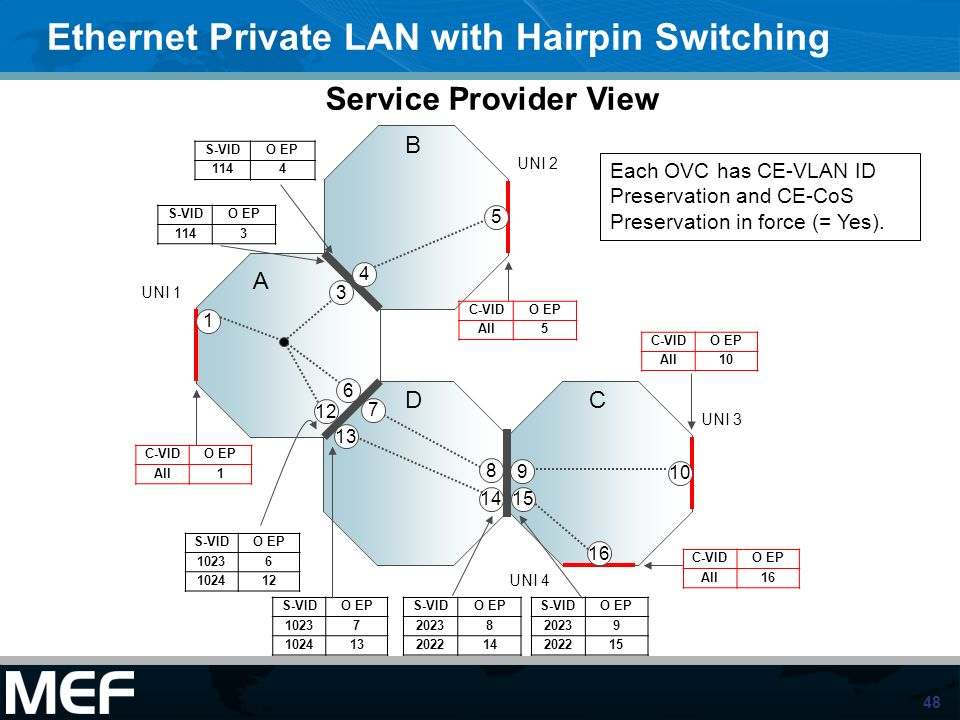Ethernet Private LAN with Hairpin Switching
