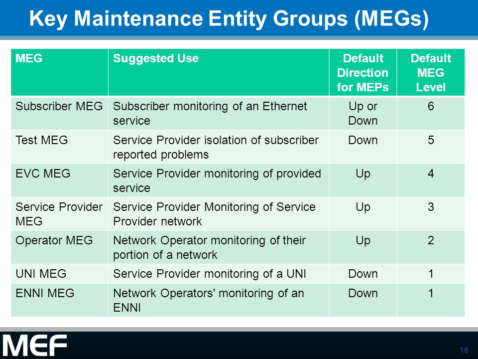 Key Maintenance Entity Groups (MEGs)