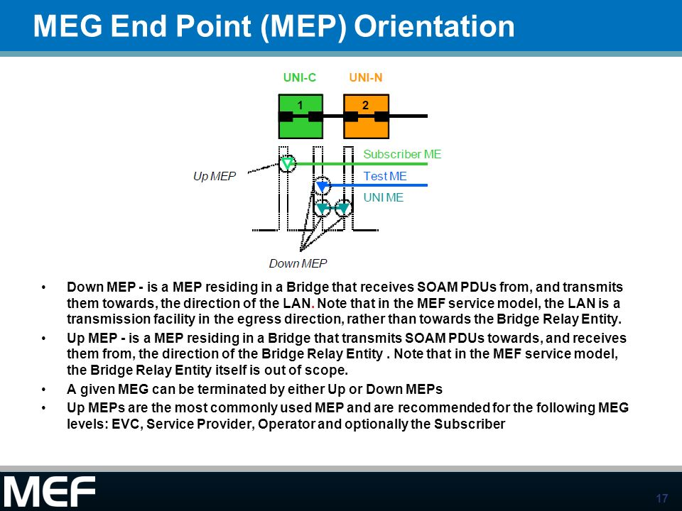 MEG End Point (MEP) Orientation
