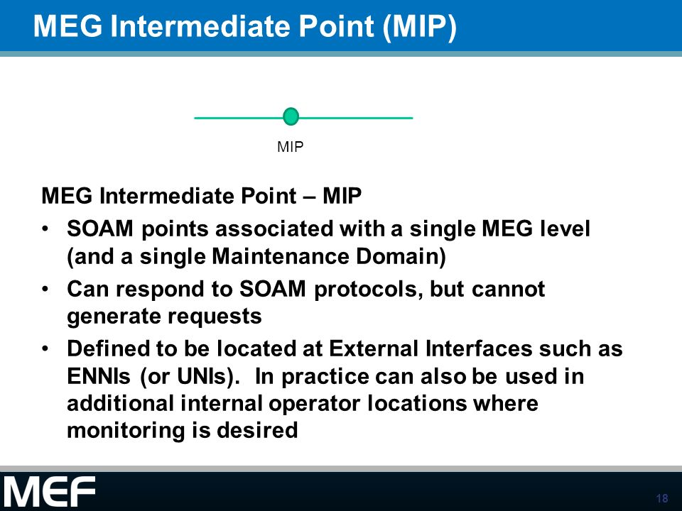 MEG Intermediate Point (MIP)