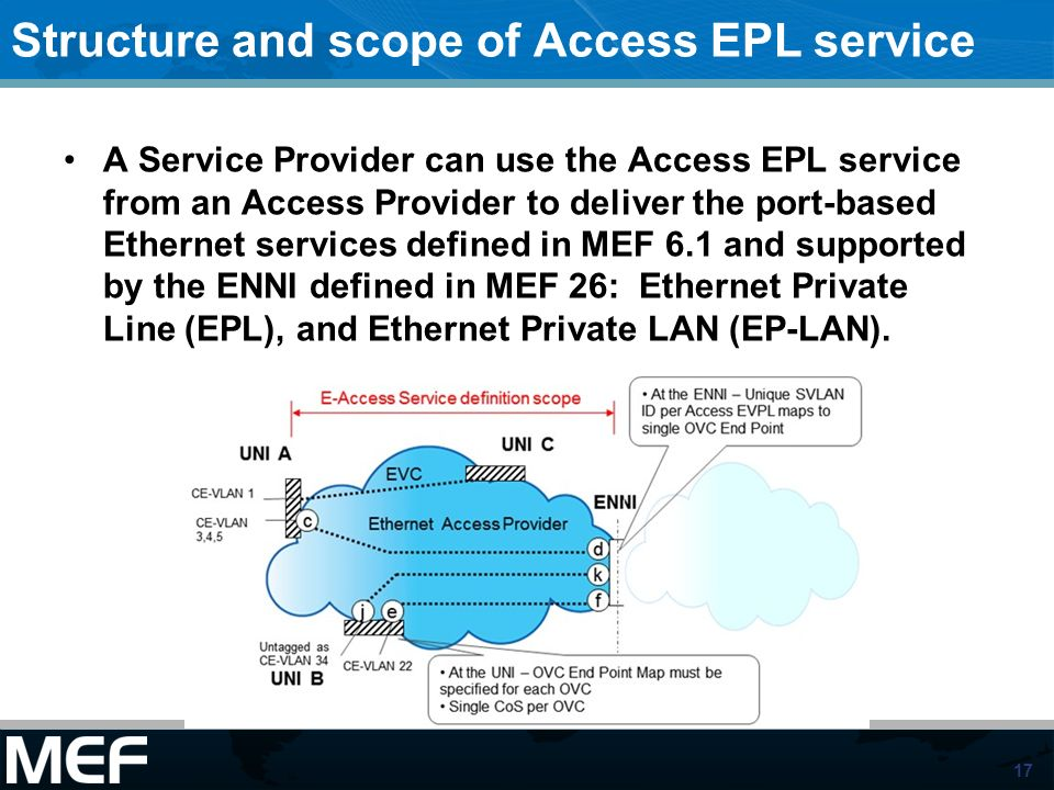 Structure and scope of Access EPL service