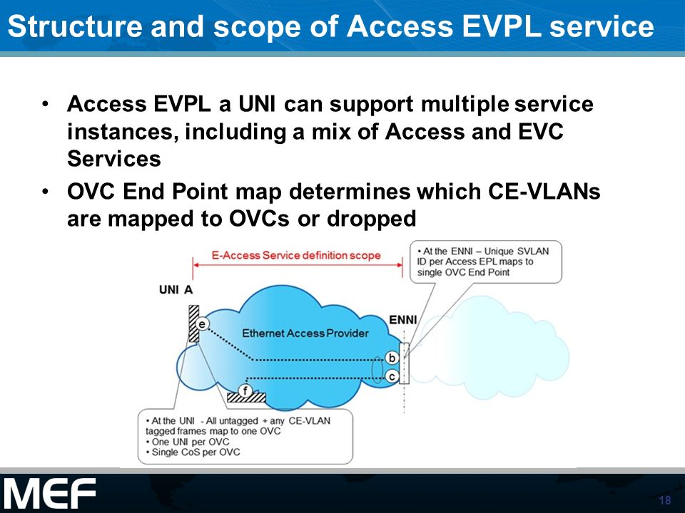 Structure and scope of Access EVPL service