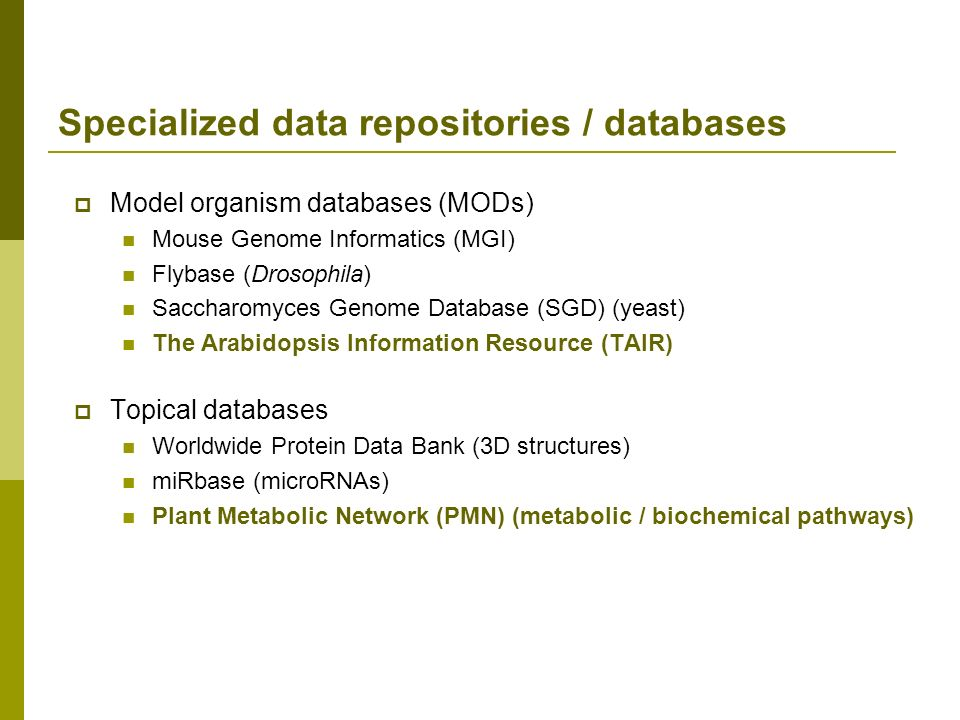 Specialized data repositories / databases