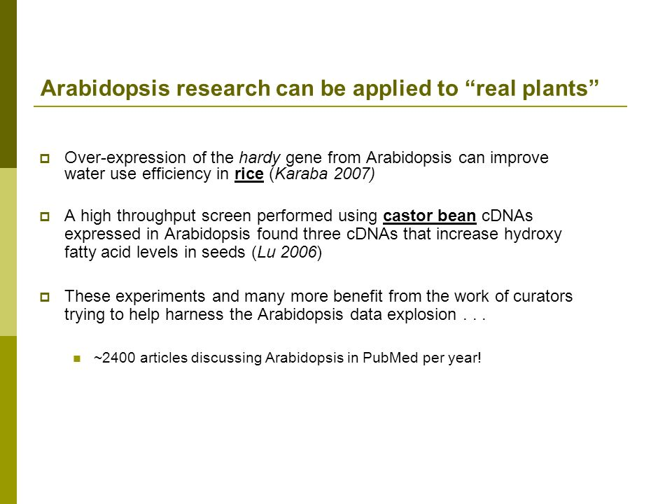 Arabidopsis research can be applied to real plants