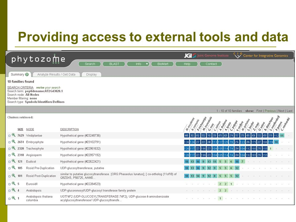 Providing access to external tools and data