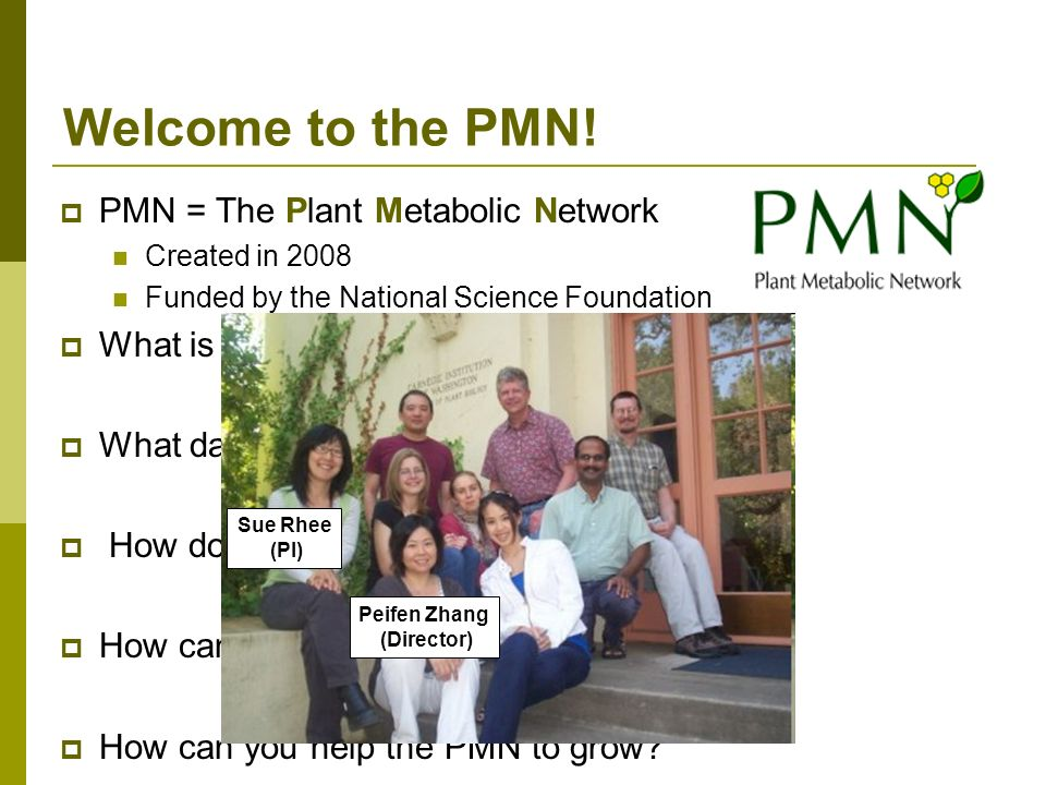 Welcome to the PMN! PMN = The Plant Metabolic Network What is the PMN
