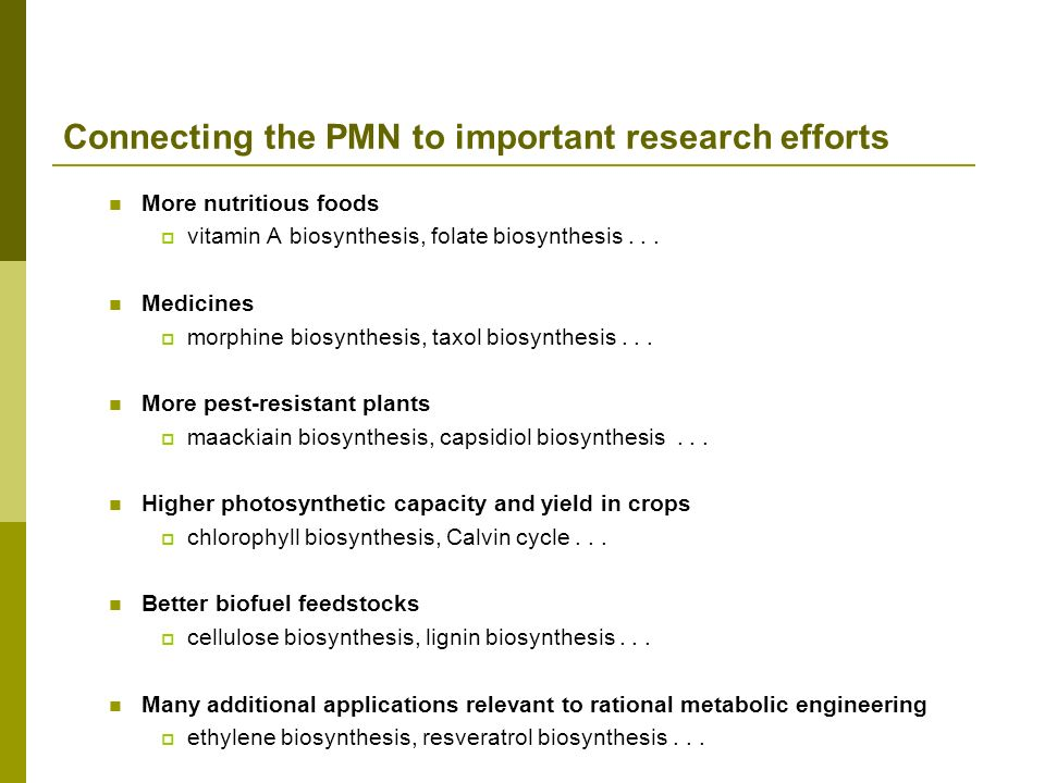 Connecting the PMN to important research efforts