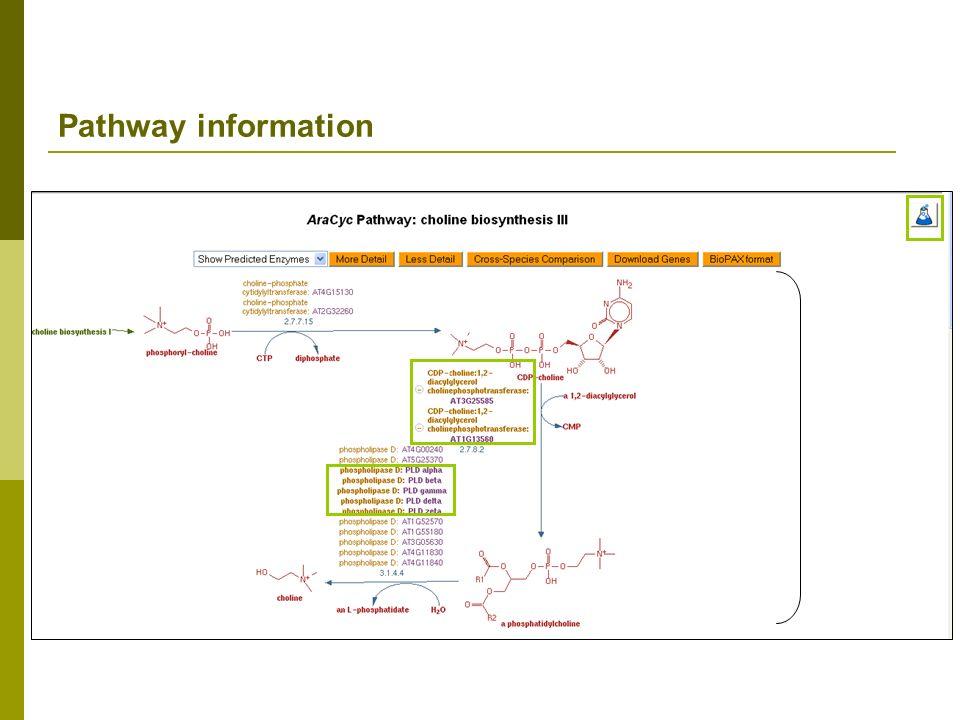 Pathway information