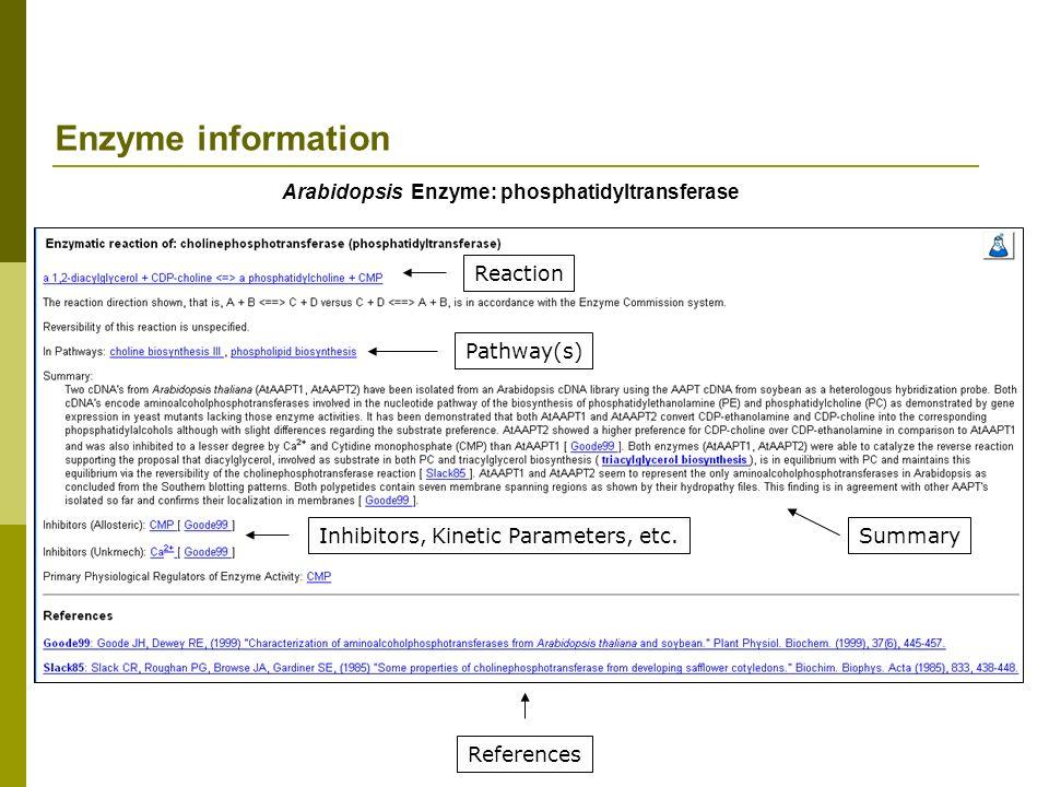 Arabidopsis Enzyme: phosphatidyltransferase