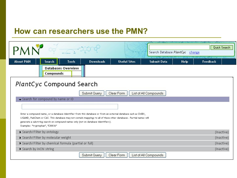 How can researchers use the PMN