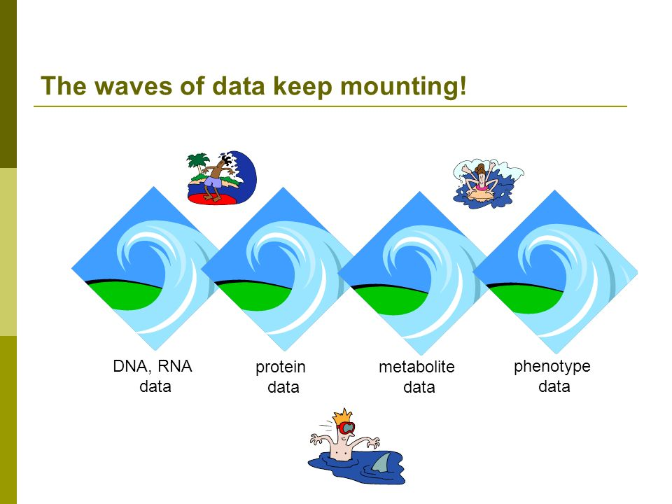 The waves of data keep mounting!