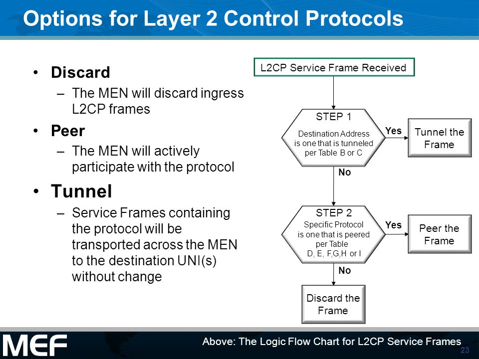 Options for Layer 2 Control Protocols