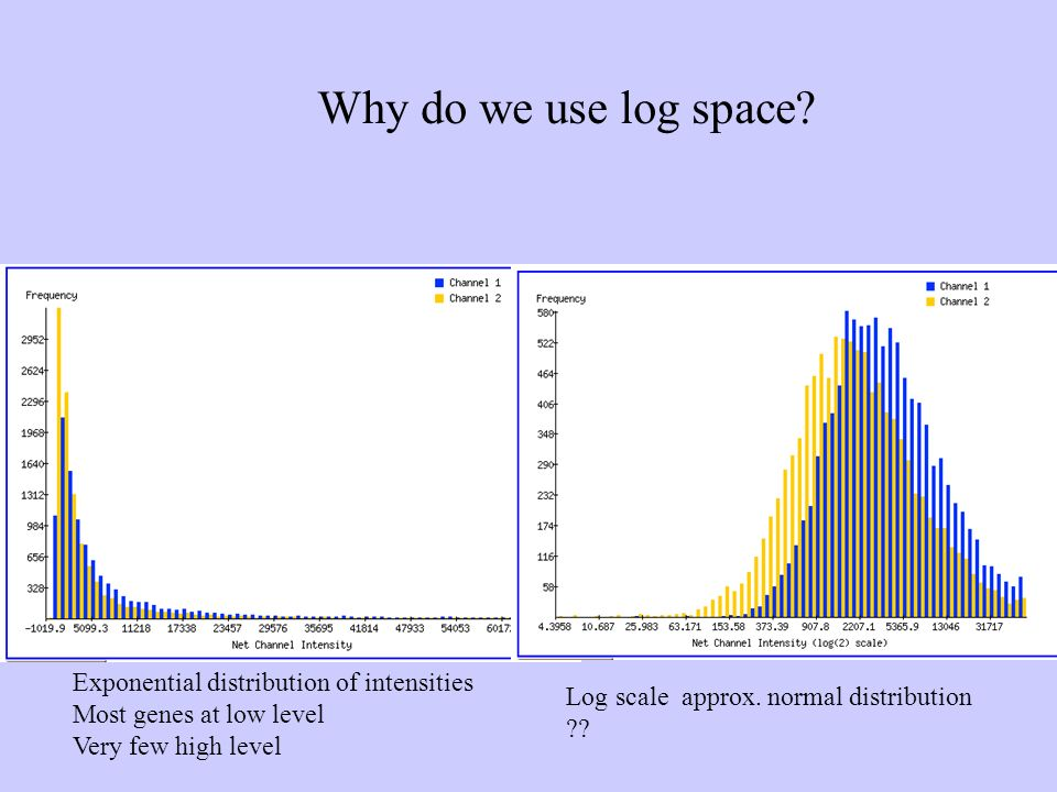 Why do we use log space Exponential distribution of intensities