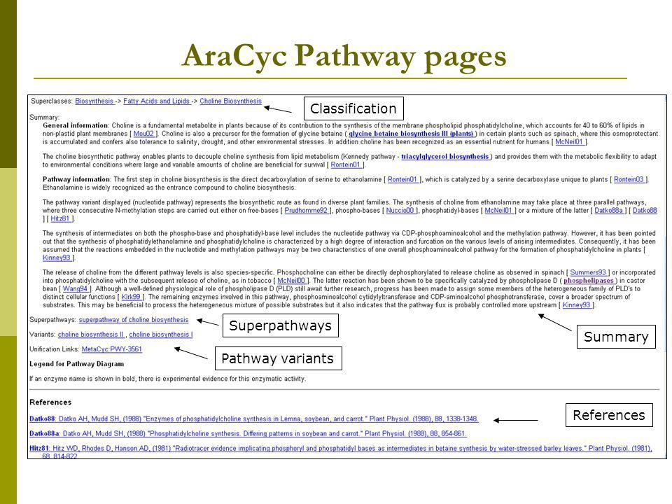 AraCyc Pathway pages Classification Superpathways Summary