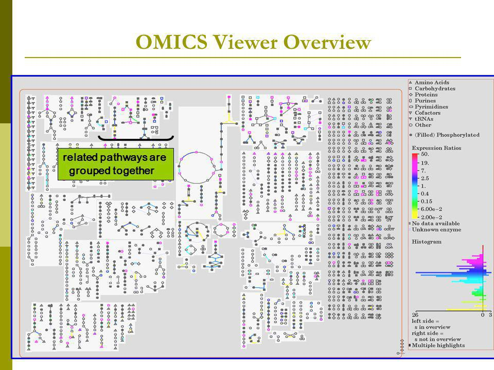 OMICS Viewer Overview related pathways are grouped together