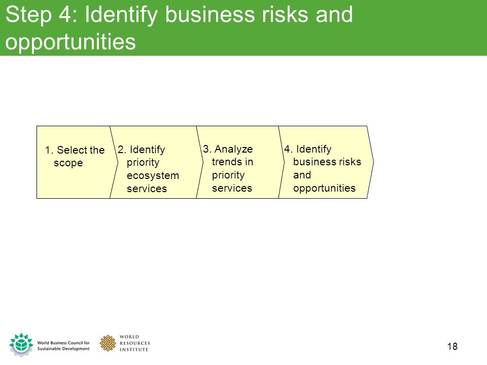 Step 4: Identify business risks and opportunities