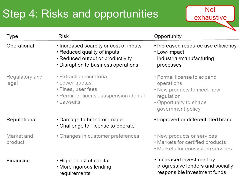 Step 4: Risks and opportunities