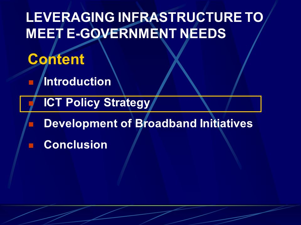 LEVERAGING INFRASTRUCTURE TO MEET E-GOVERNMENT NEEDS - ppt ...