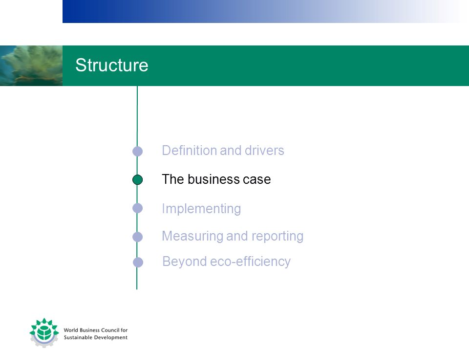Structure Definition and drivers The business case The business case