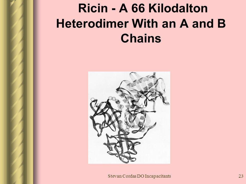 Ricin - A 66 Kilodalton Heterodimer With an A and B Chains