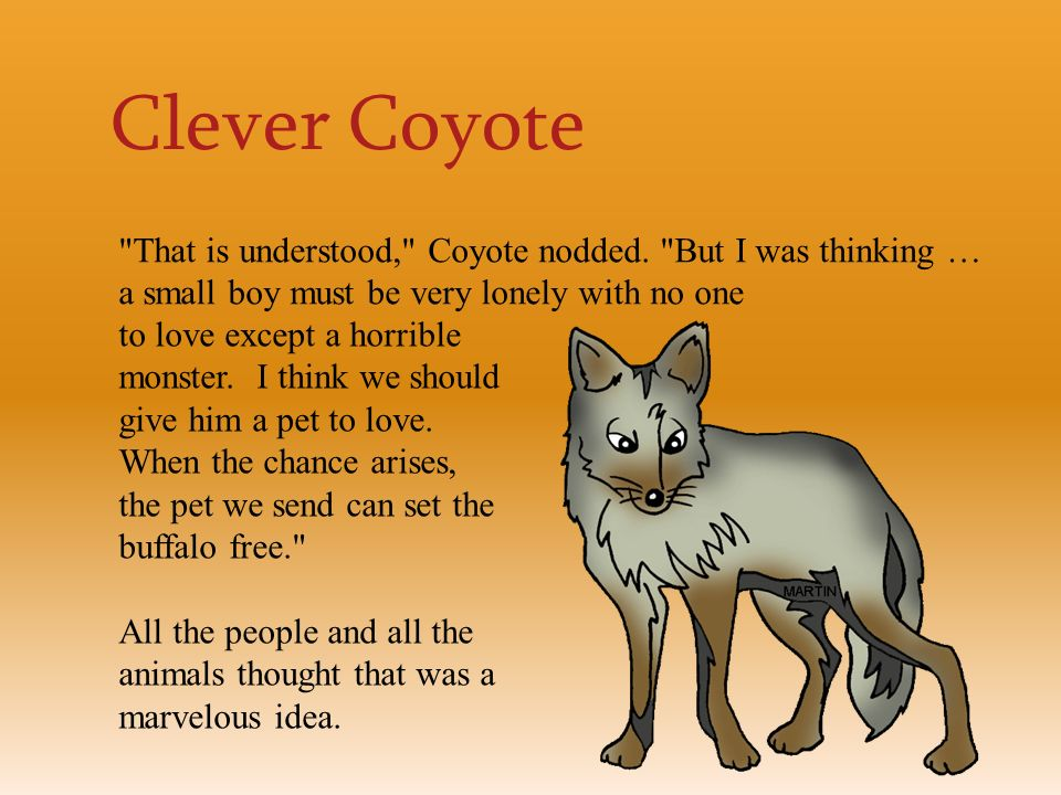 coyote and the buffalo